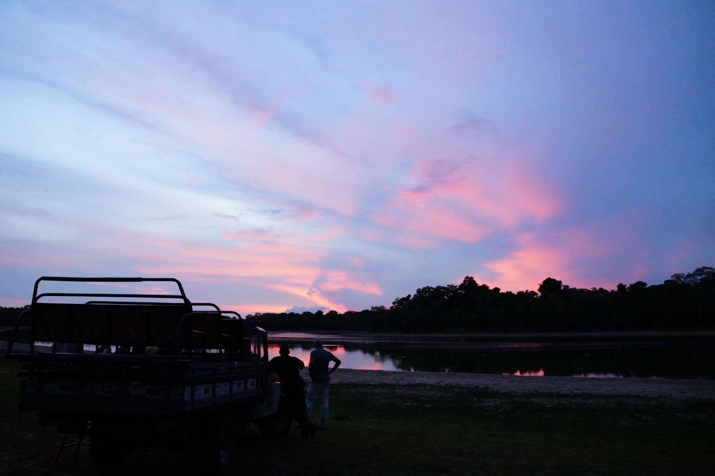 Pantanal Game Drive Sunset