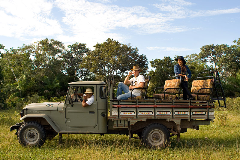Pantanal Game Drives