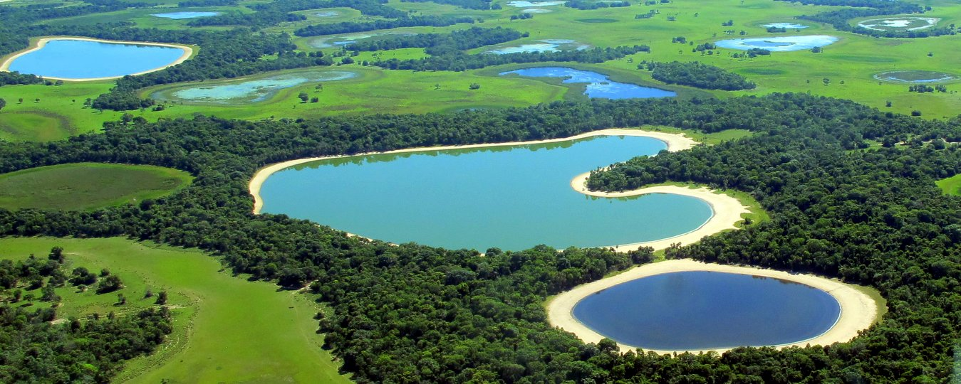 Lakes of the Pantanal