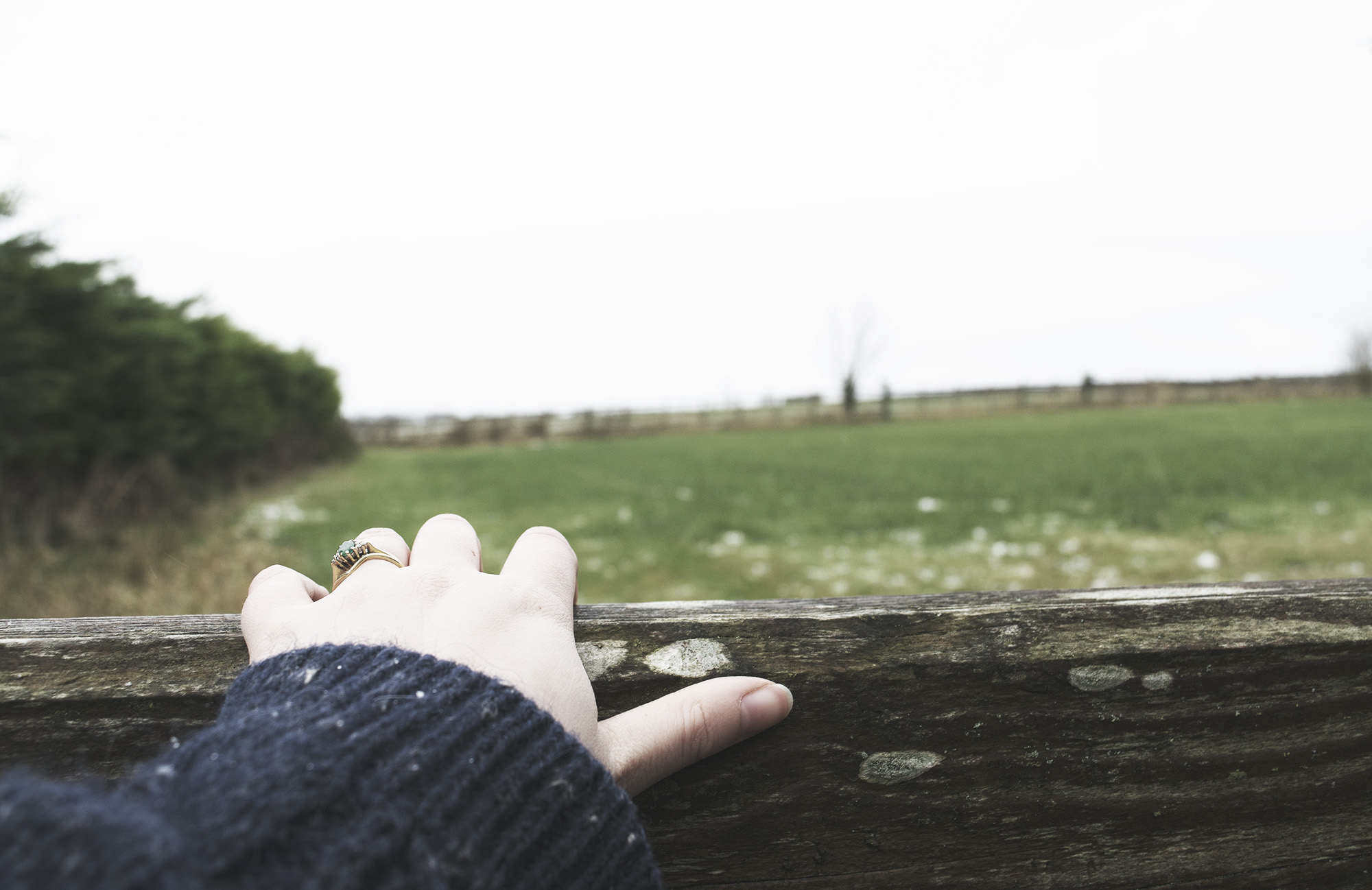 Living Slowly - a blurb