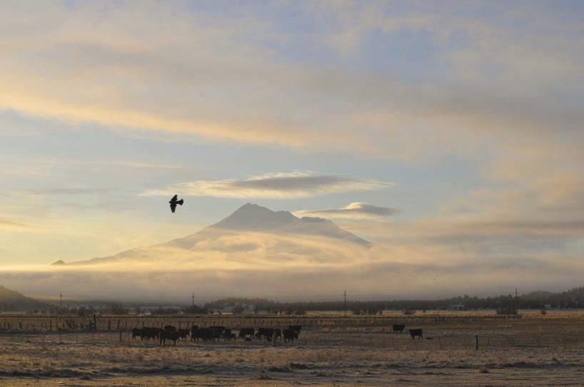 morning-view1.jpg