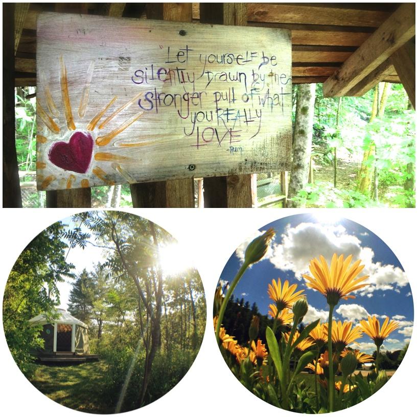 quote_yurt_flower.jpg