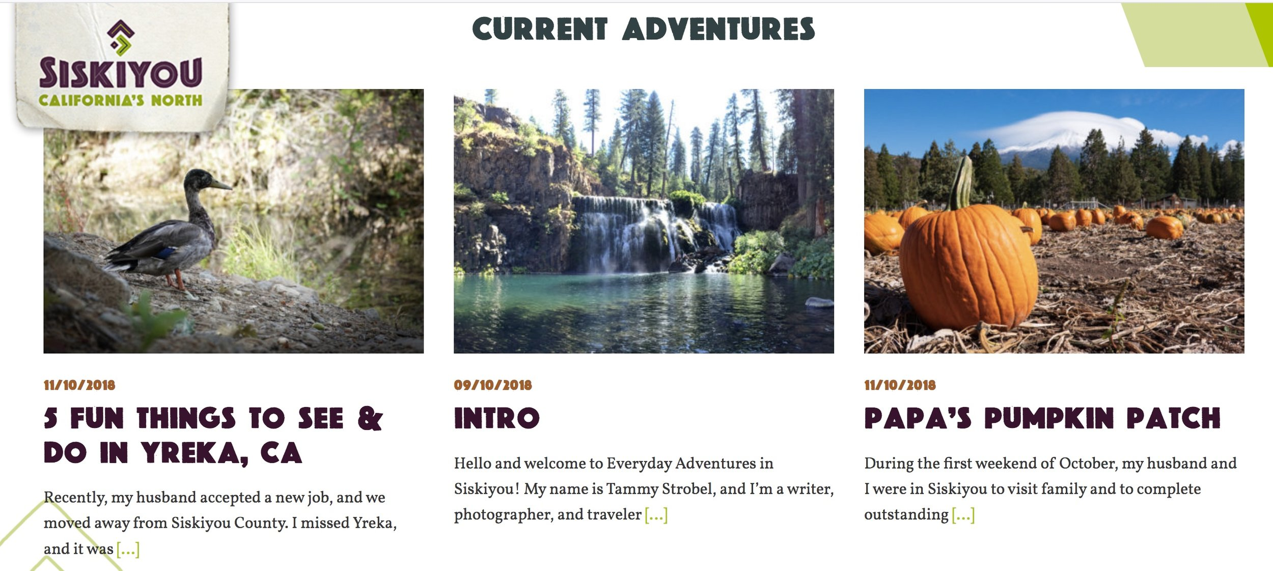 current adventures.jpeg