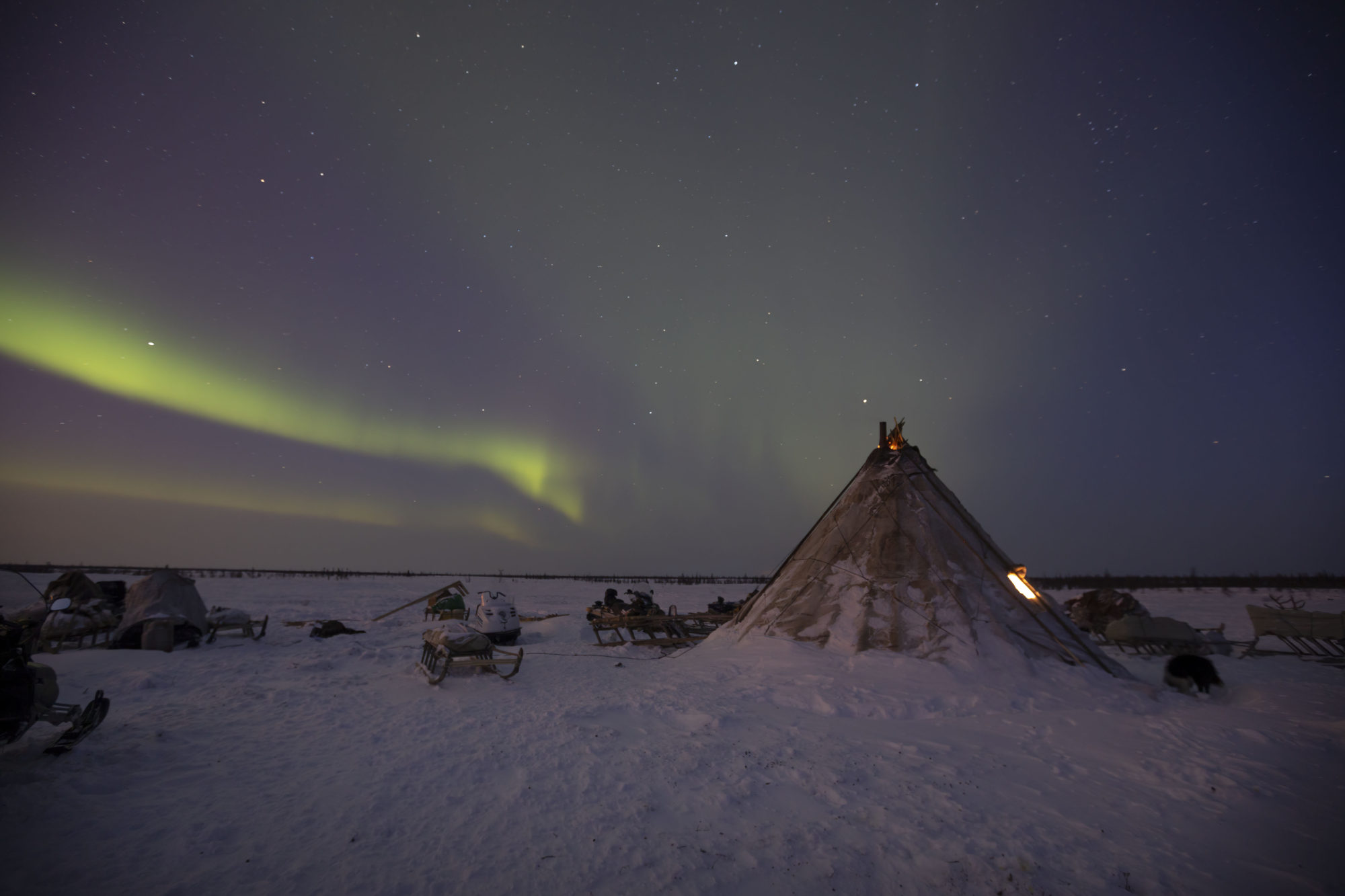 Sue Flood, 'Nenets Camp' (2018).