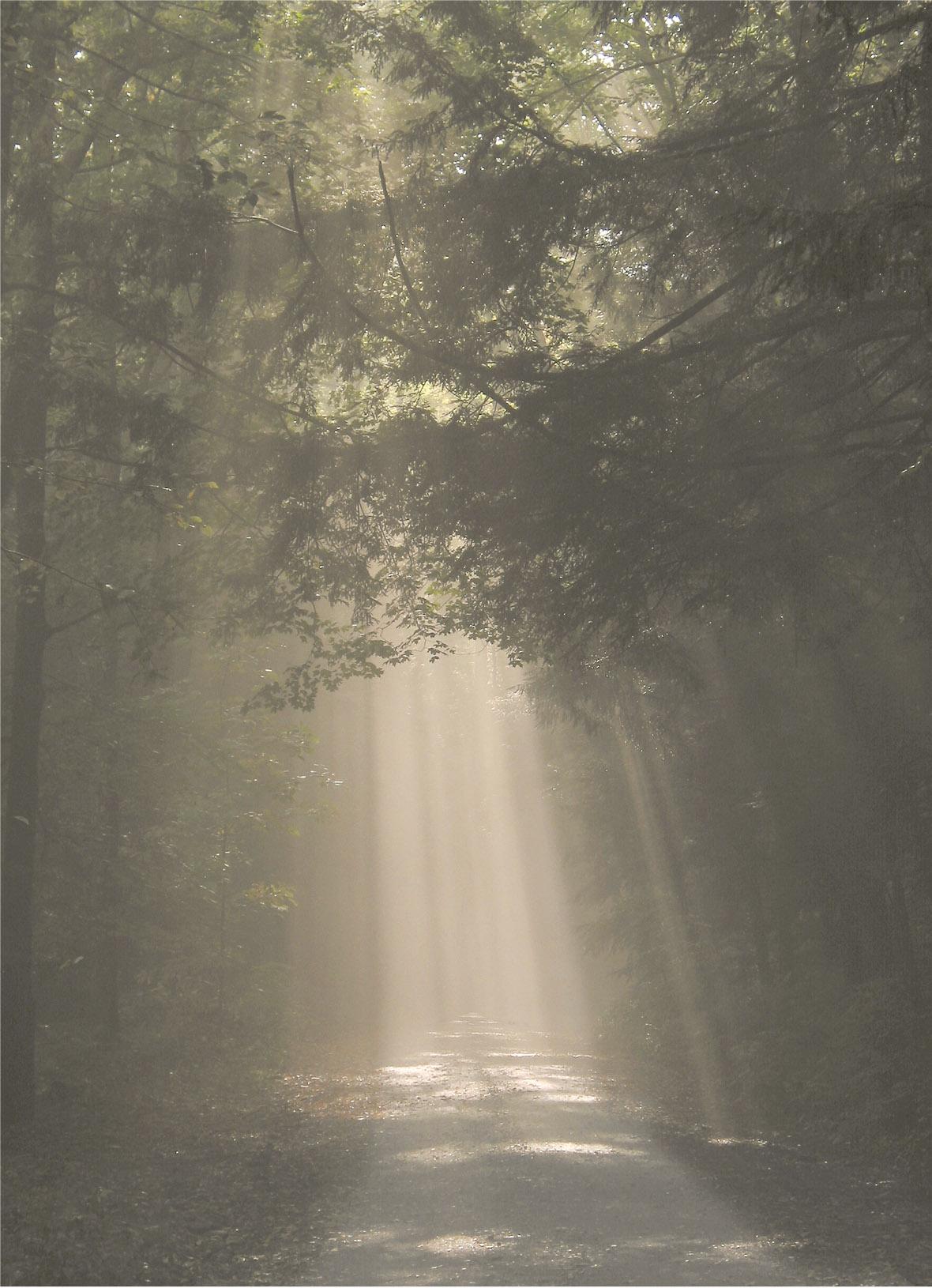 The Road to Salisbury