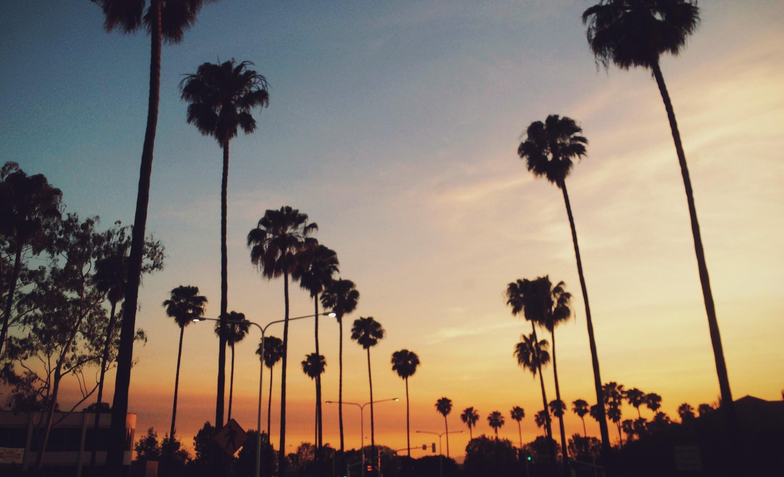 LOS ANGELES - SUMMER 2019