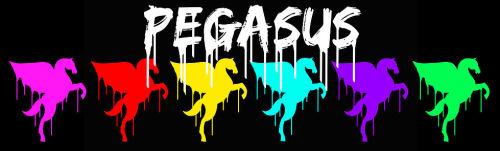 Pegasus Header.jpg
