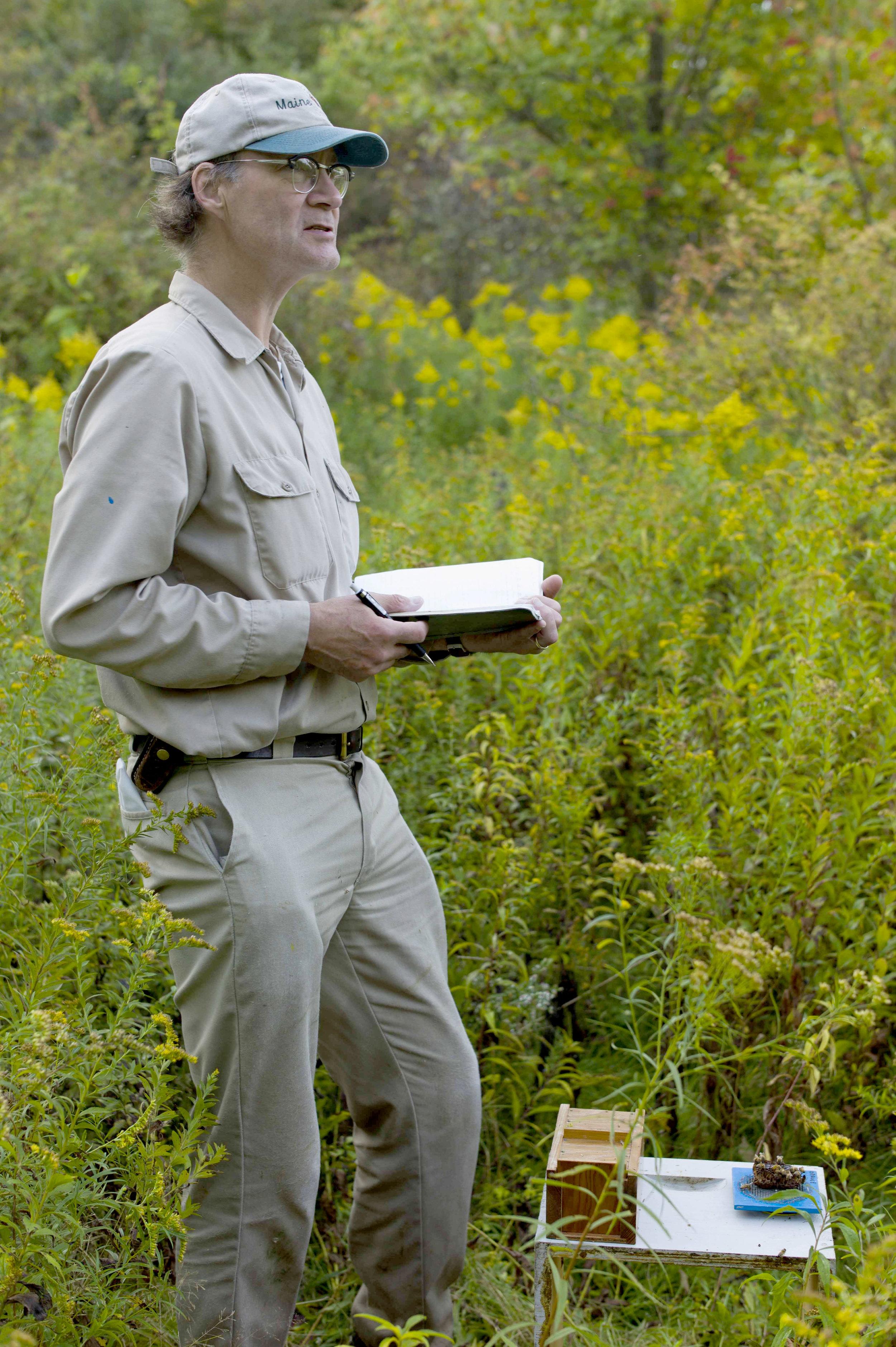 Seeley_Author_Photo_Bee_Hunting.jpg