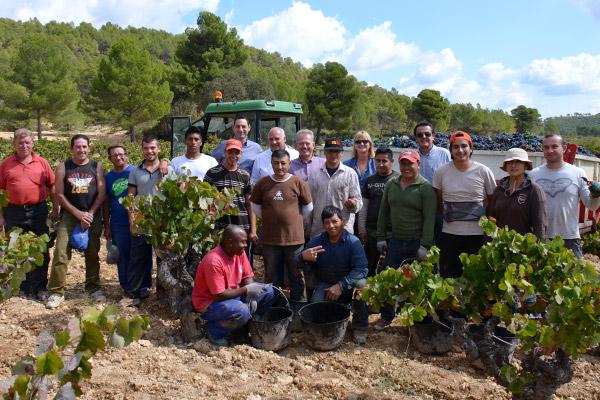 Utiel-Requena, Spain harvest team