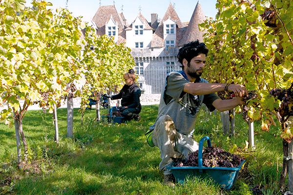 PRODUCTA VIGNOBLES   Bordeaux, France