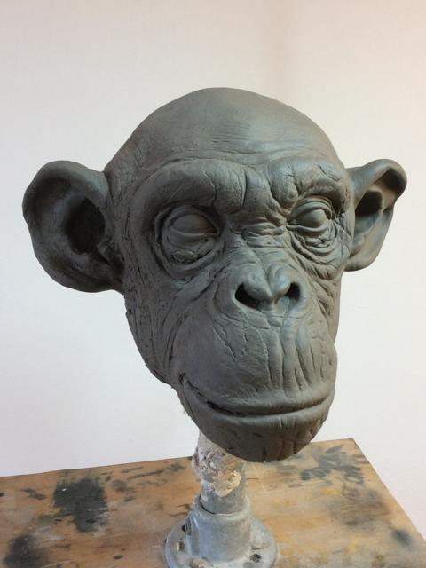 chimpanzee head sculpt