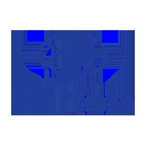 hilton-300x300.png