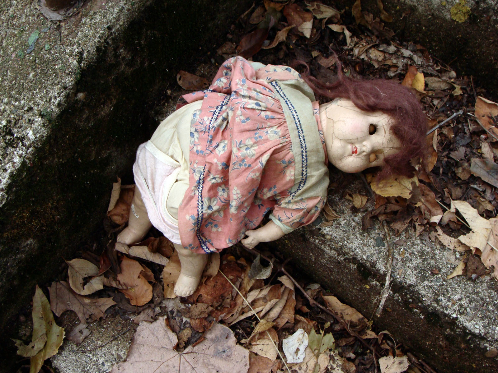 Doll stepsedited 07491 copy.jpg