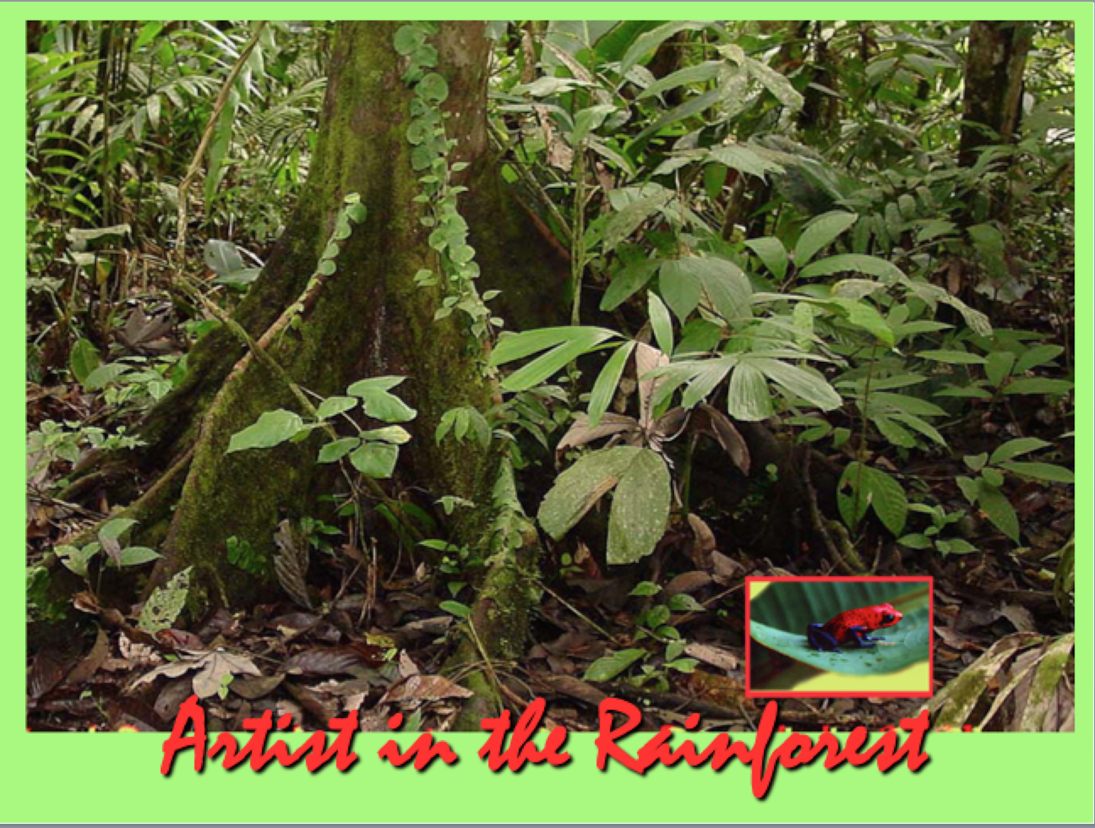 Artist in the Rainforest 2019-05-07 at 4.41.03 PM.png