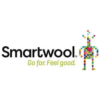 Smart_wool.jpg