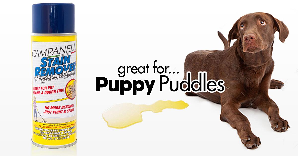PuppyPuddles.jpg