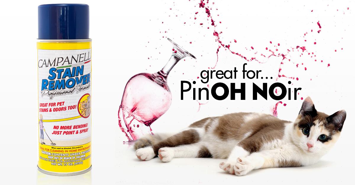 CatNoir.jpg