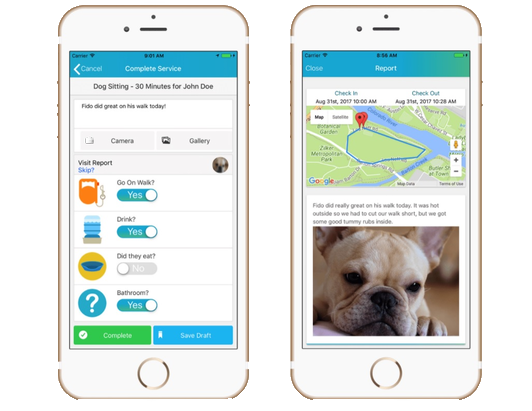 The Time To Pet app provides a detailed view of your dog's location, and the distance/duration of the walk. Available online or on mobile in the App Store and Google Play.