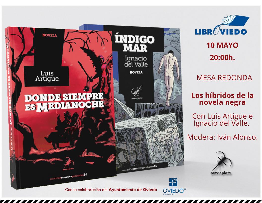 Presentaciones DSEM. Libroviedo.png