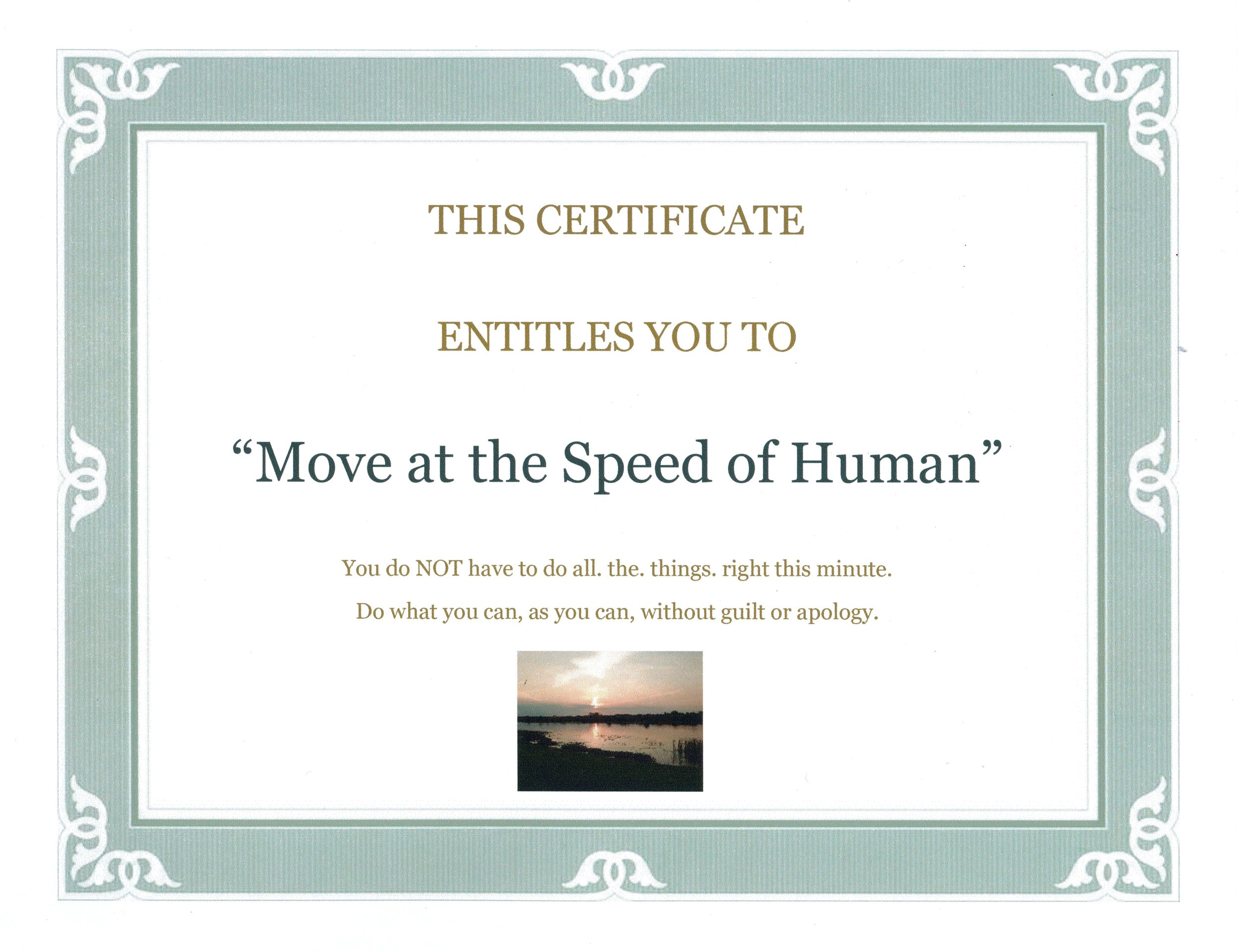 At the Speed of Human graphic (2).jpeg