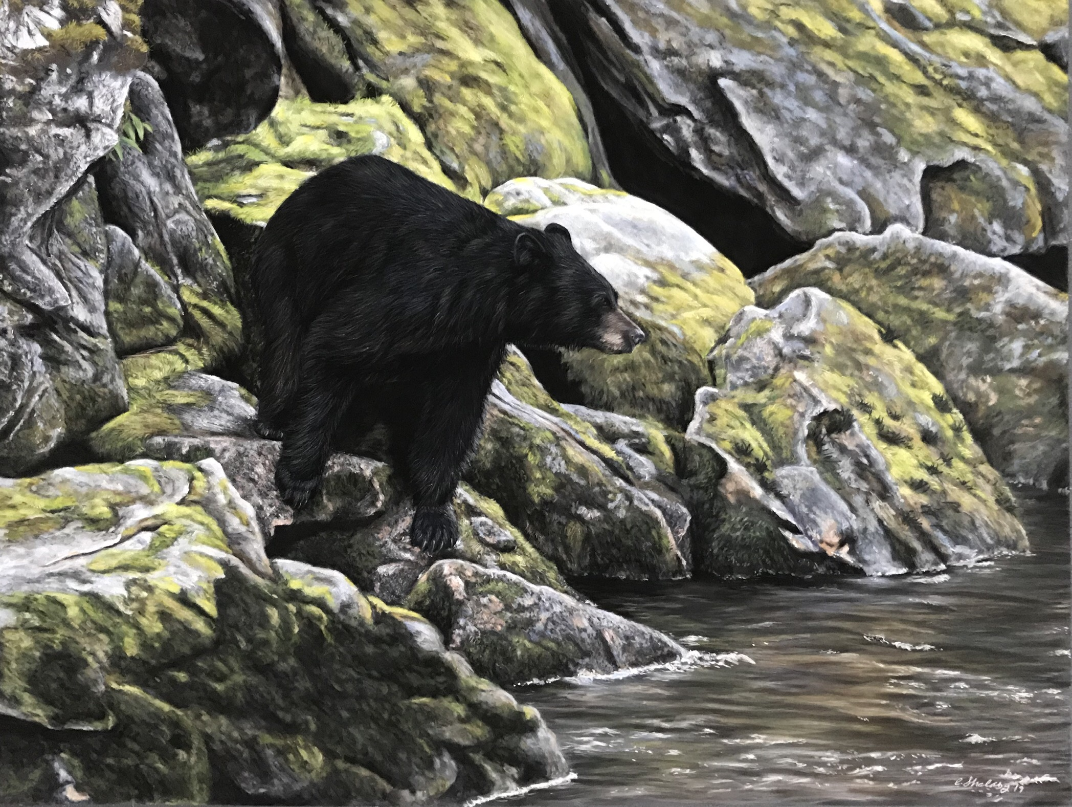"""The River Wild"""