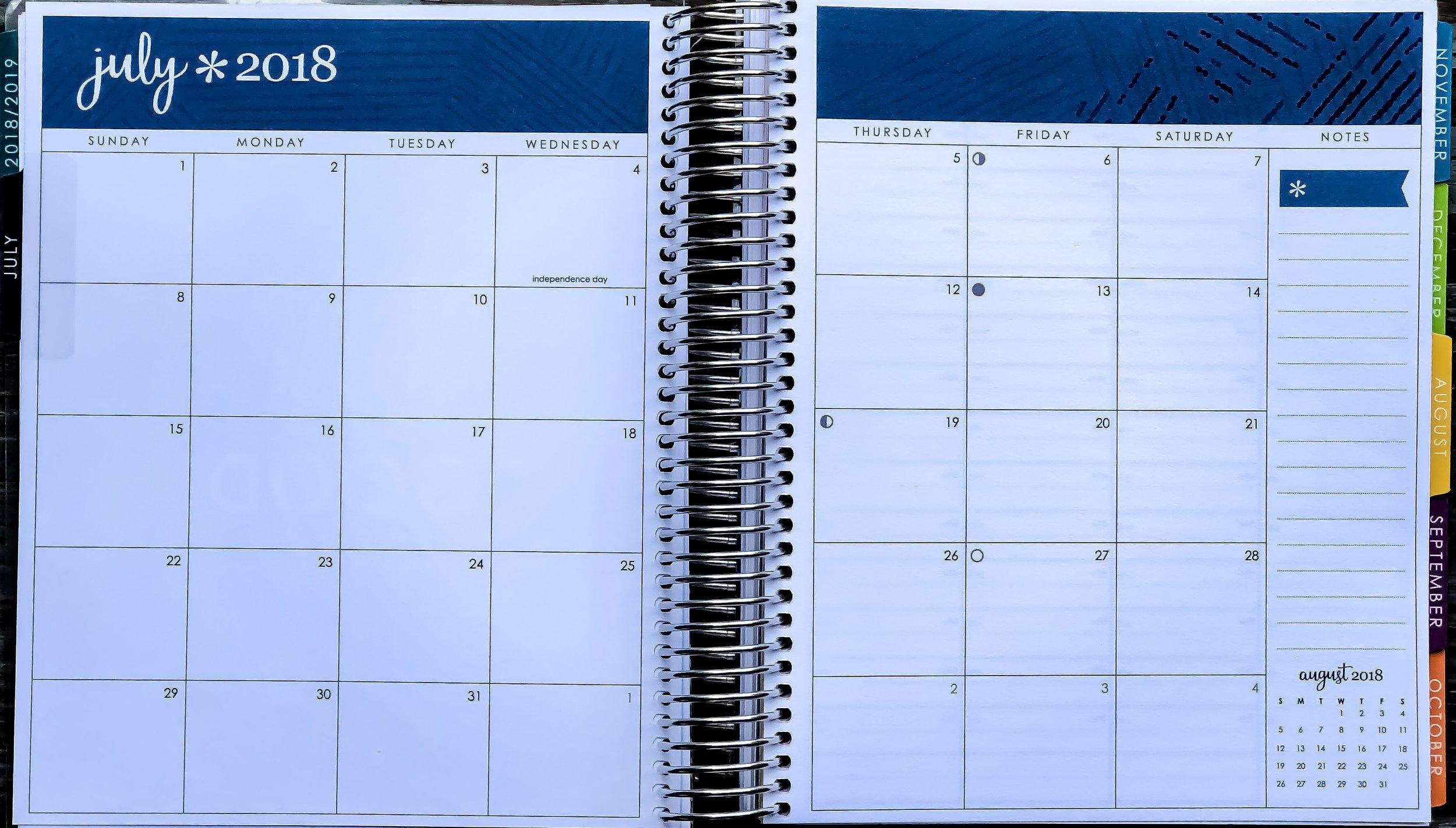 2019 Erin Condren Life Planner ~ Monthly Calendar