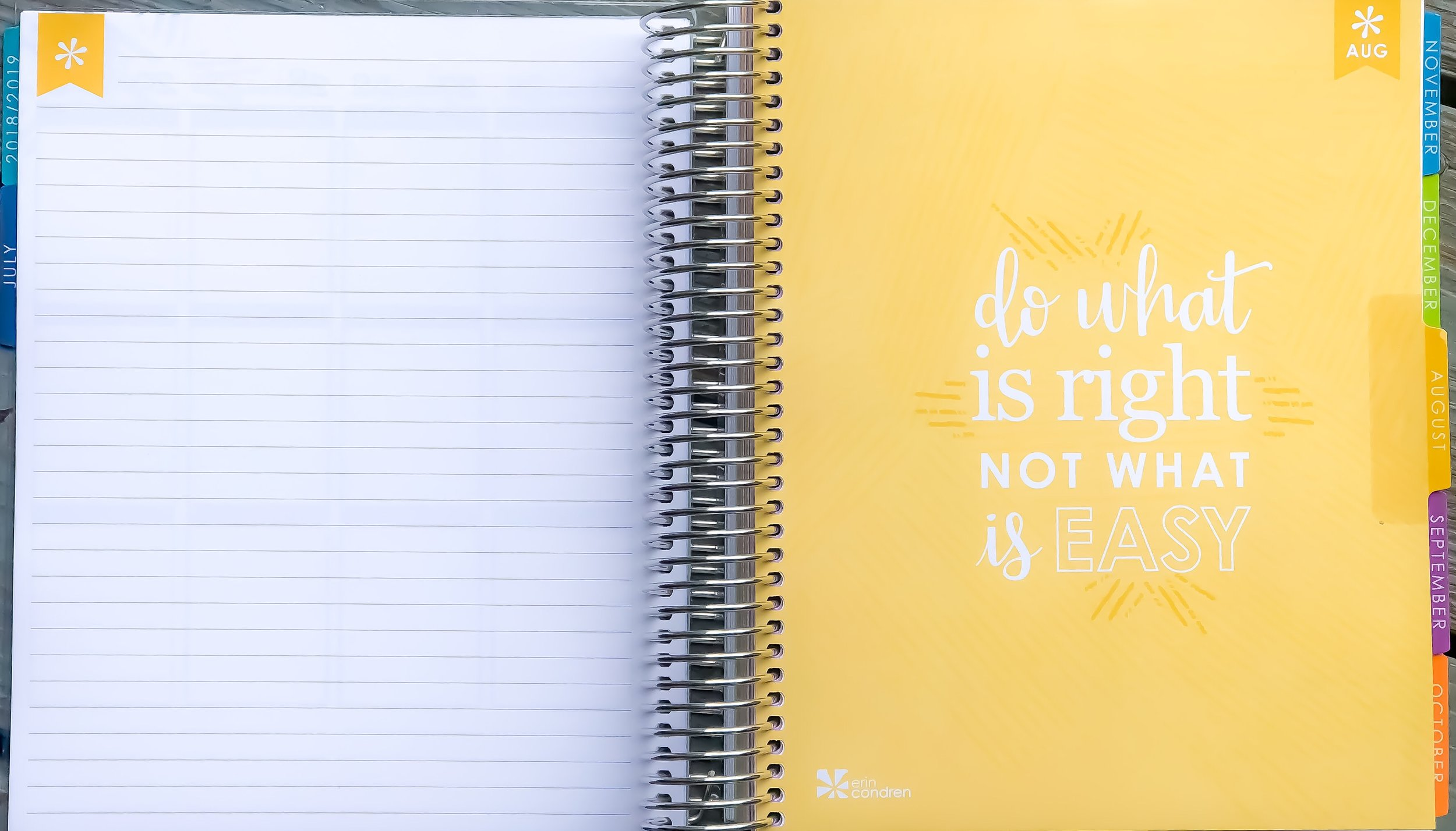 2019 Erin Condren Life Planner ~ Note Page Before Month Starts.