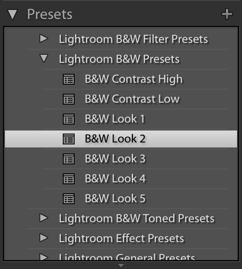 Illustration of the Lightroom presets tab in the develop