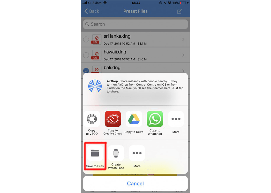 Press to Save to Files to do it with the icloud way