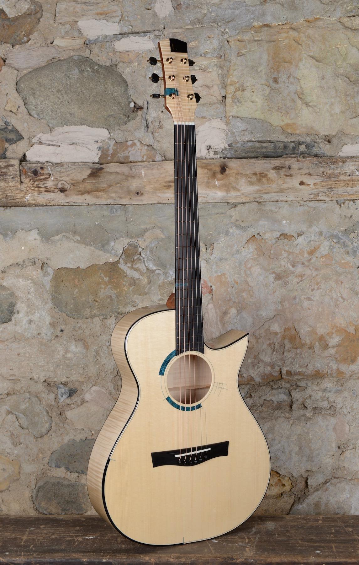 Copy of Taran Guitars The Taran DS2