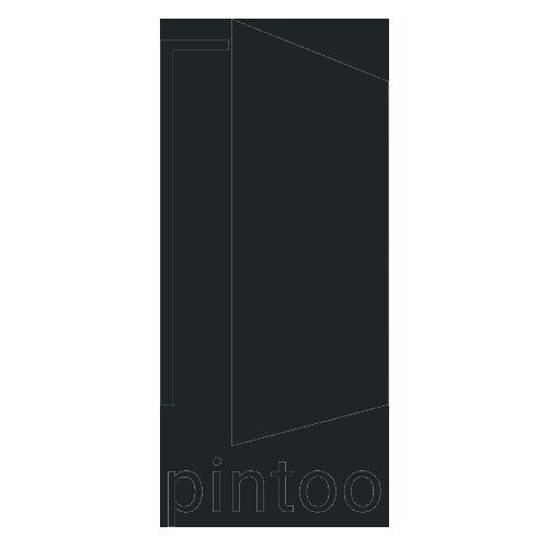 500_pintoo.png