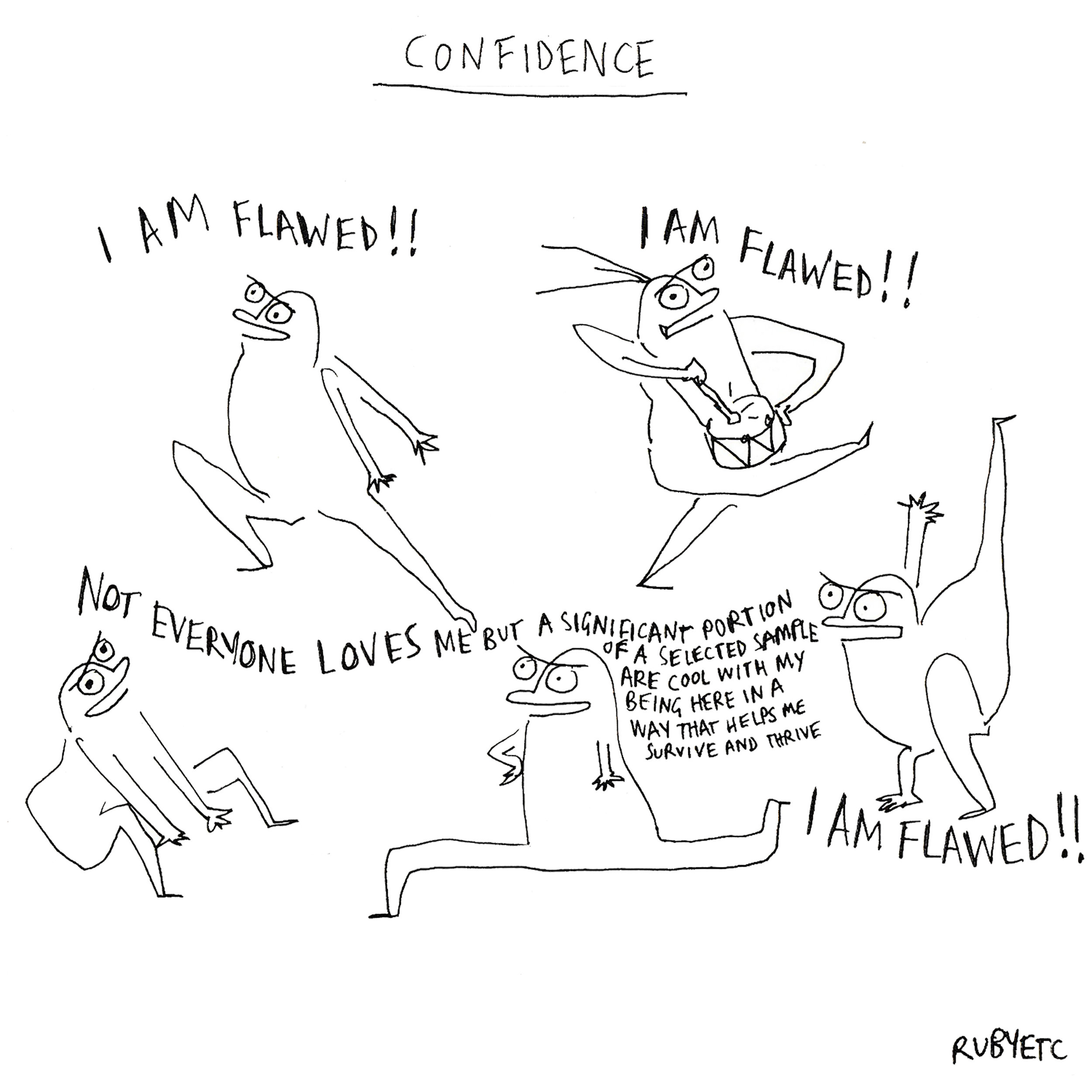 confidence s6.jpg