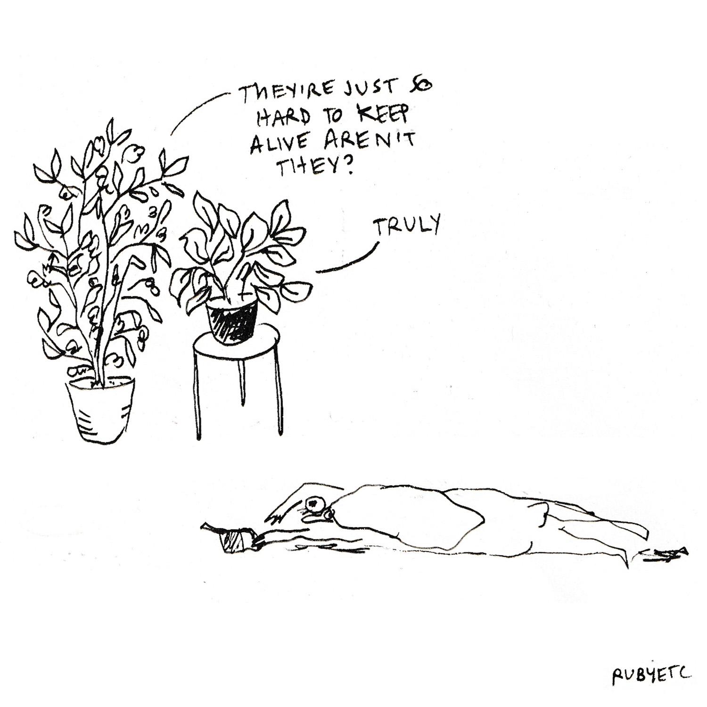 plant thing etc.jpg