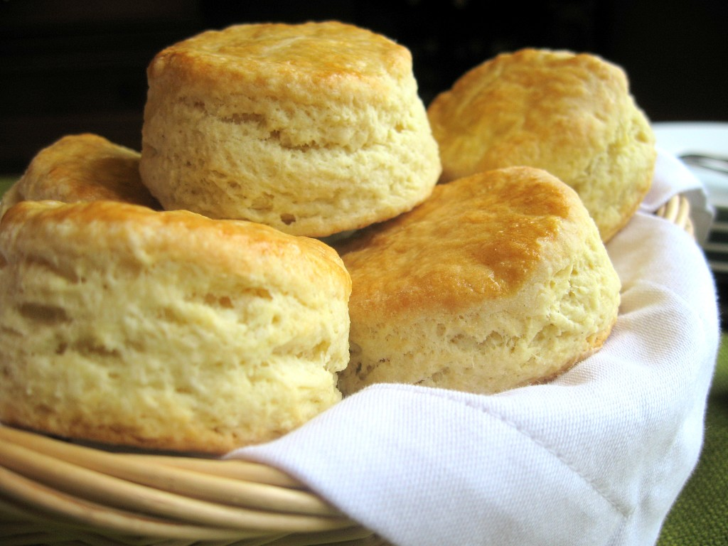 THE WORLD UNDER THAT ROCK for the Inquisitive Eater - I crawled out from hills of buttermilk biscuits.