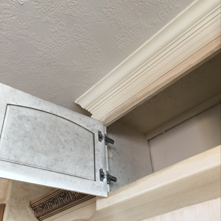 Mold at hood vent cabinet proving the need for maintenance at the envelope.