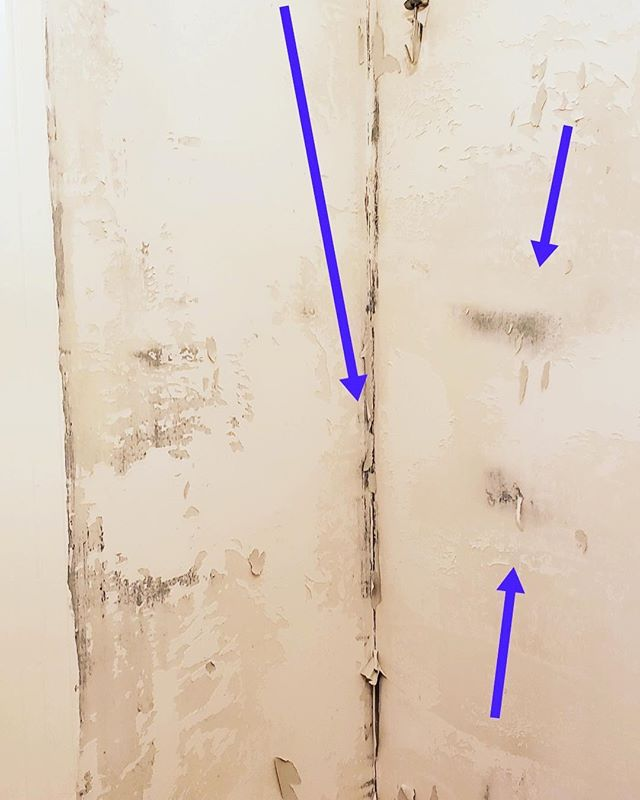 Love wallpaper? The dark spots are where the mold got trapped behind the new wallpaper.  #TONERhomematters #forensicwalkthrough  #houstonconstruction #houstonhome #houstonrealestate #houstonbuilders #houstonbuilder #houstoncustomhomes #homewalkthrough #homeowner #buildinghouston #houstonarchitecture #houstonengineers #homedesign #wallpaper