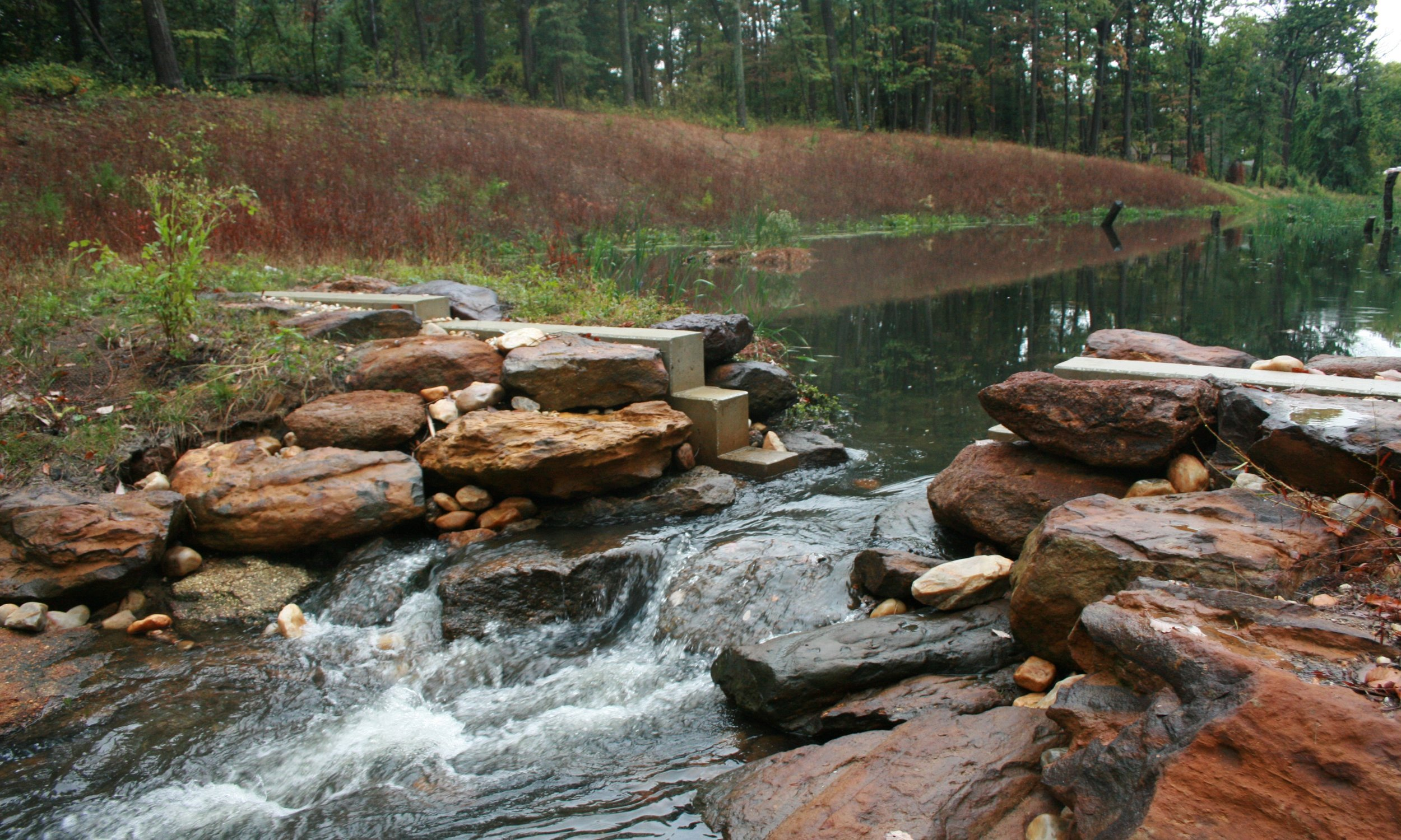 North Branch of Cypress Creek Stream & Ecological Restoration
