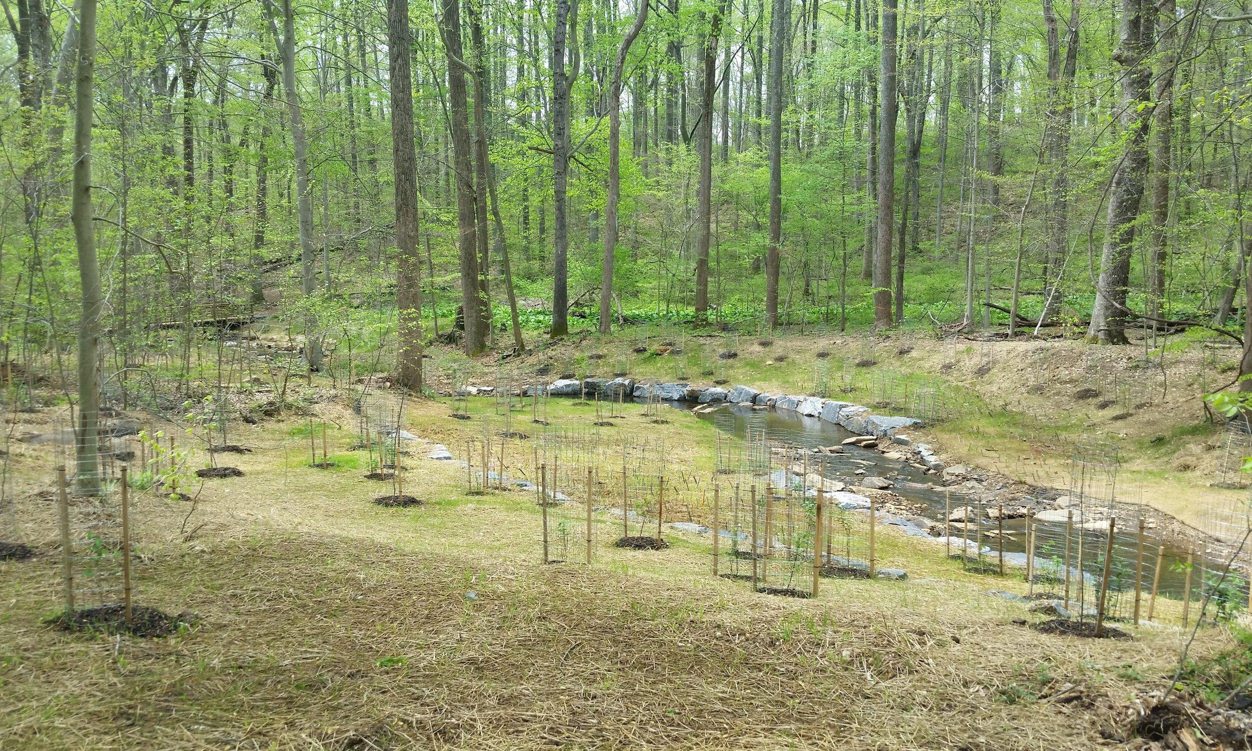 Wheel Creek Watershed Assessment, Stream Restoration & Stormwater Management Retrofits