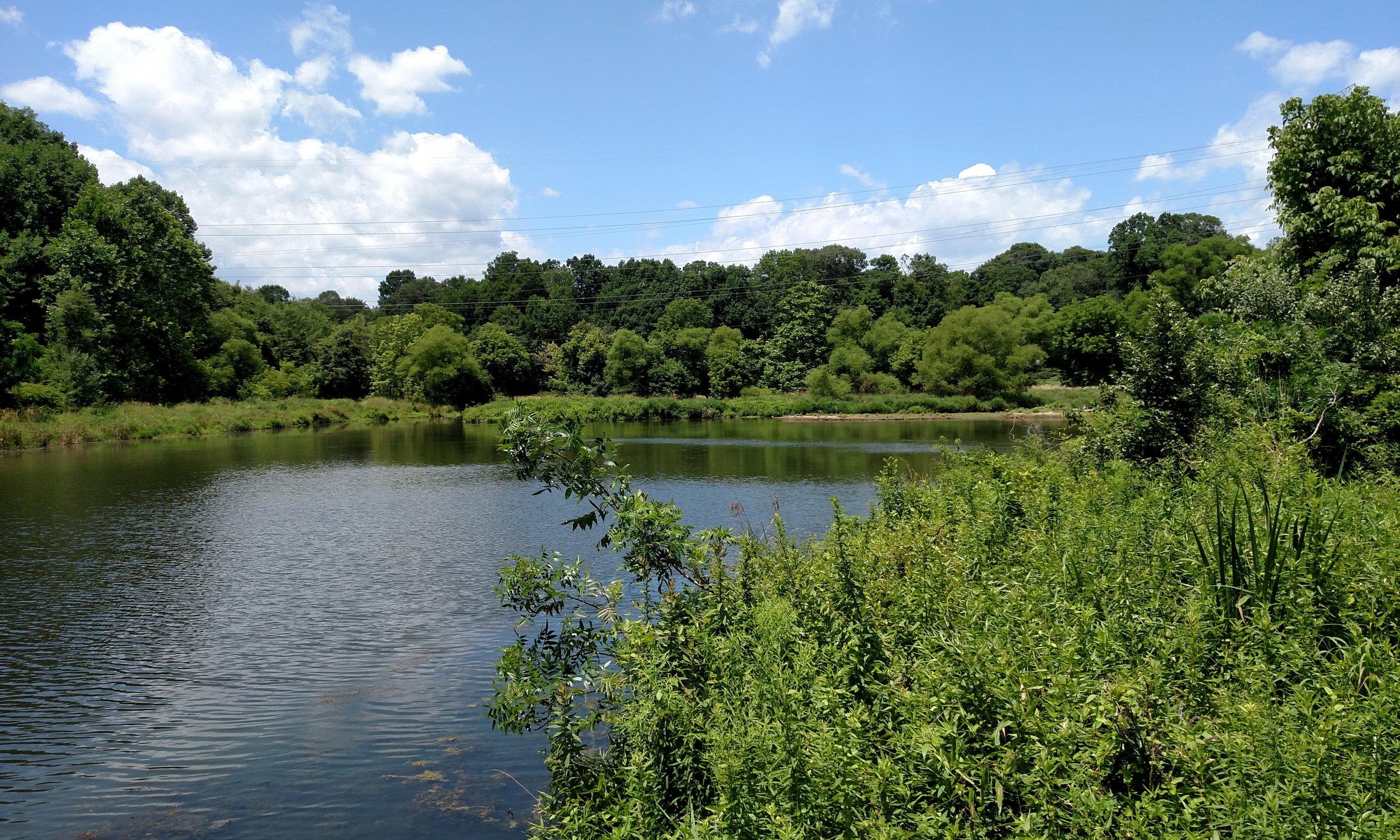 Lake Elkhorn (2).jpg