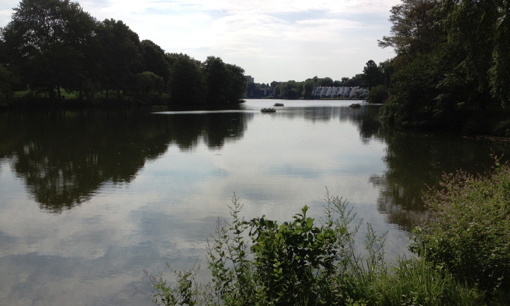 Wilde Lake (2).JPG