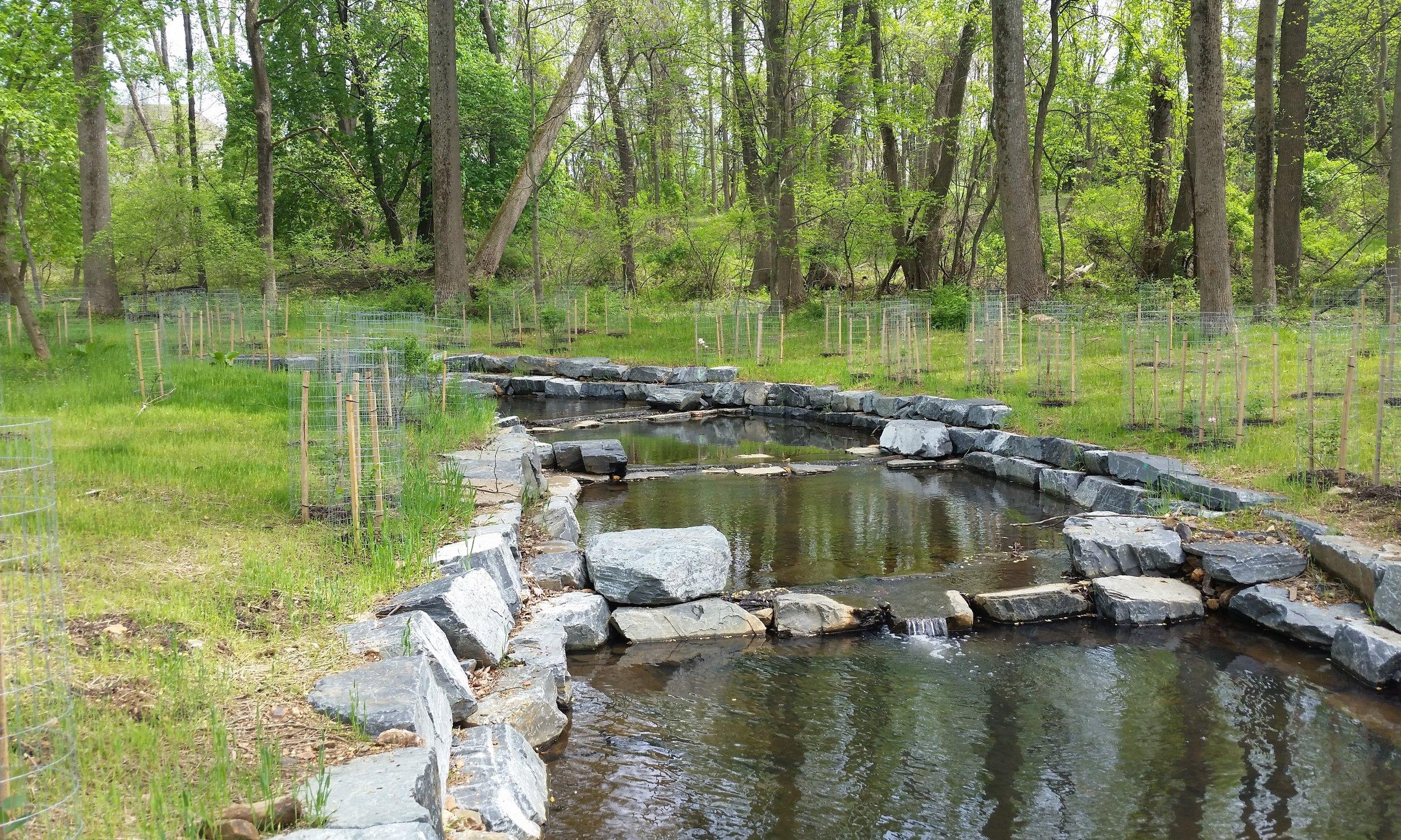 Wheel Creek (2).jpg