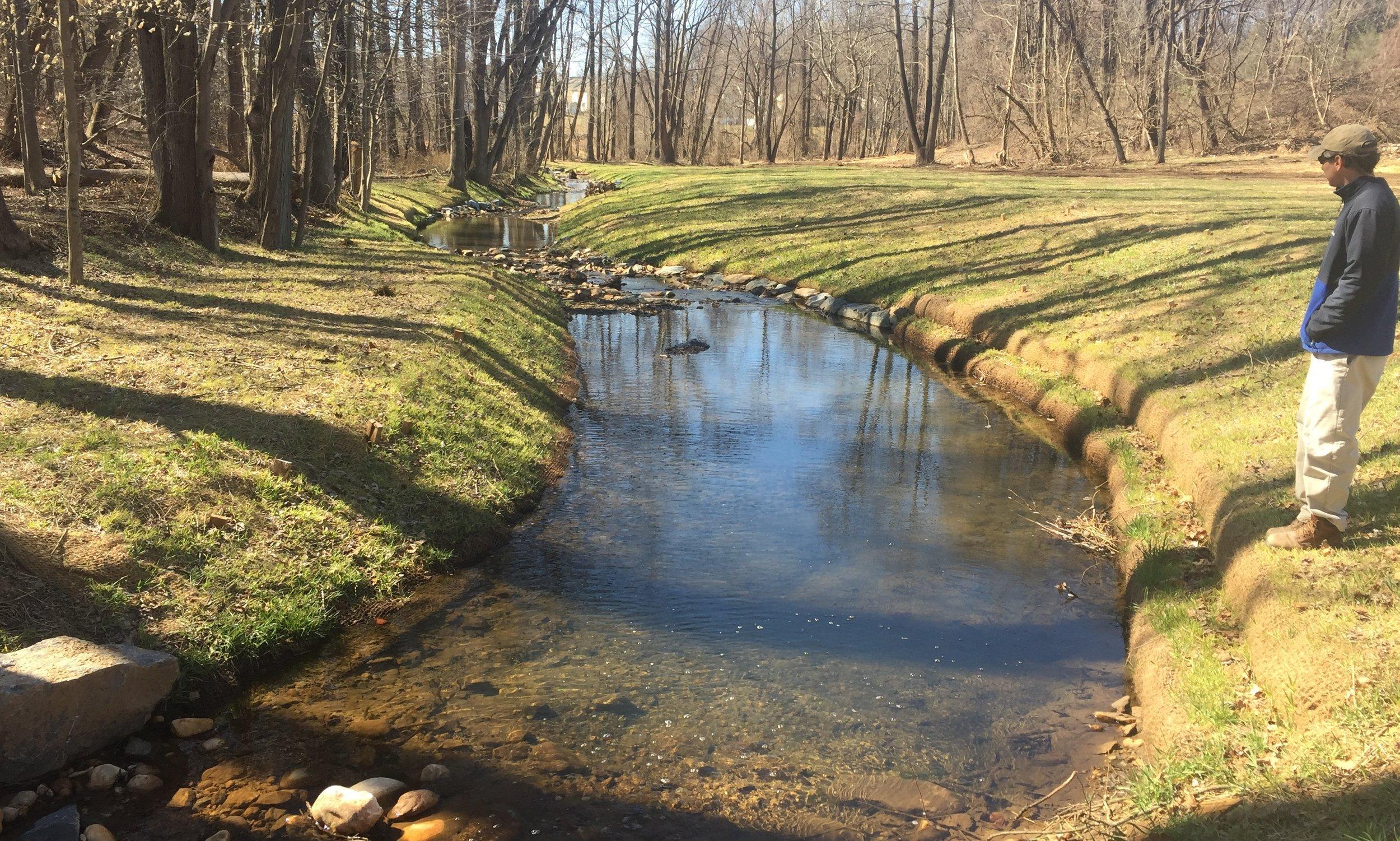 Wheel Creek (6).JPG