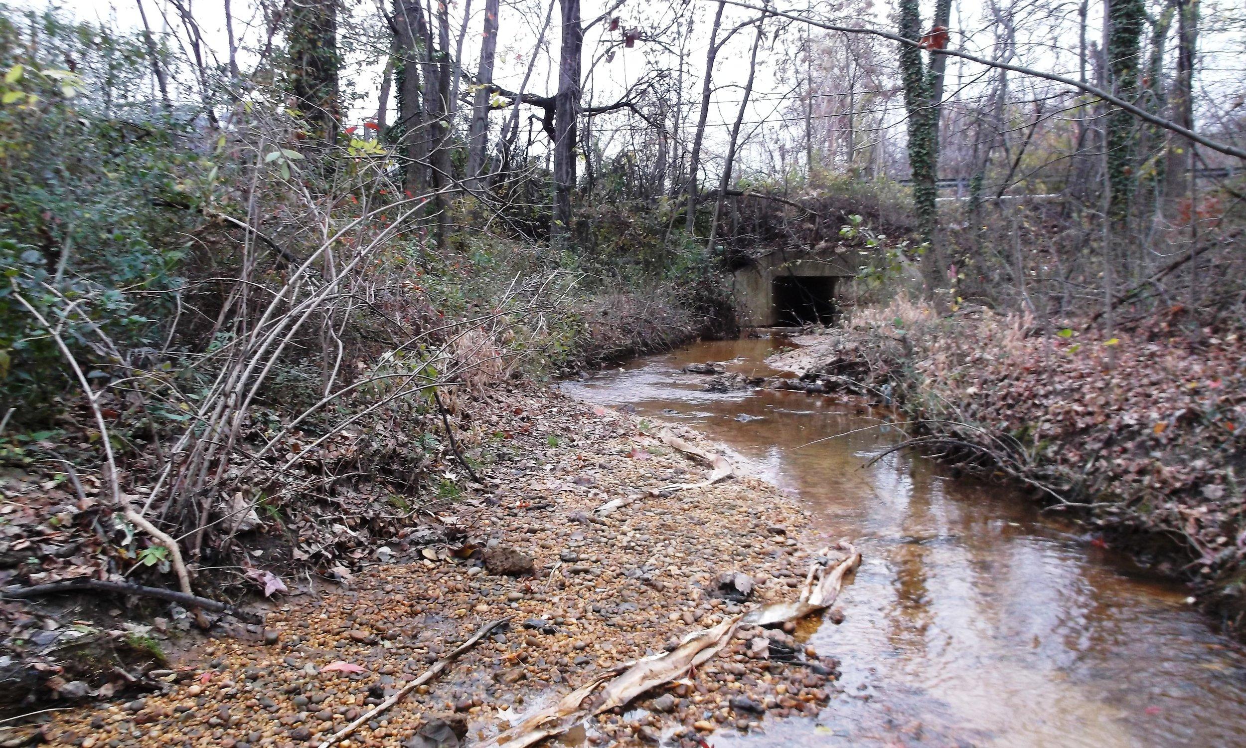 Sawmill Creek Stream & Watershed Assessment