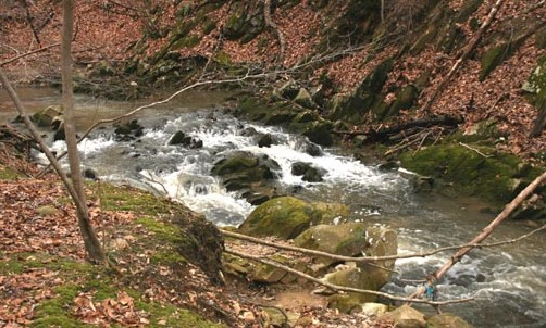 Plumtree Run Watershed/BMP Assessment & Small Watershed Action Plan
