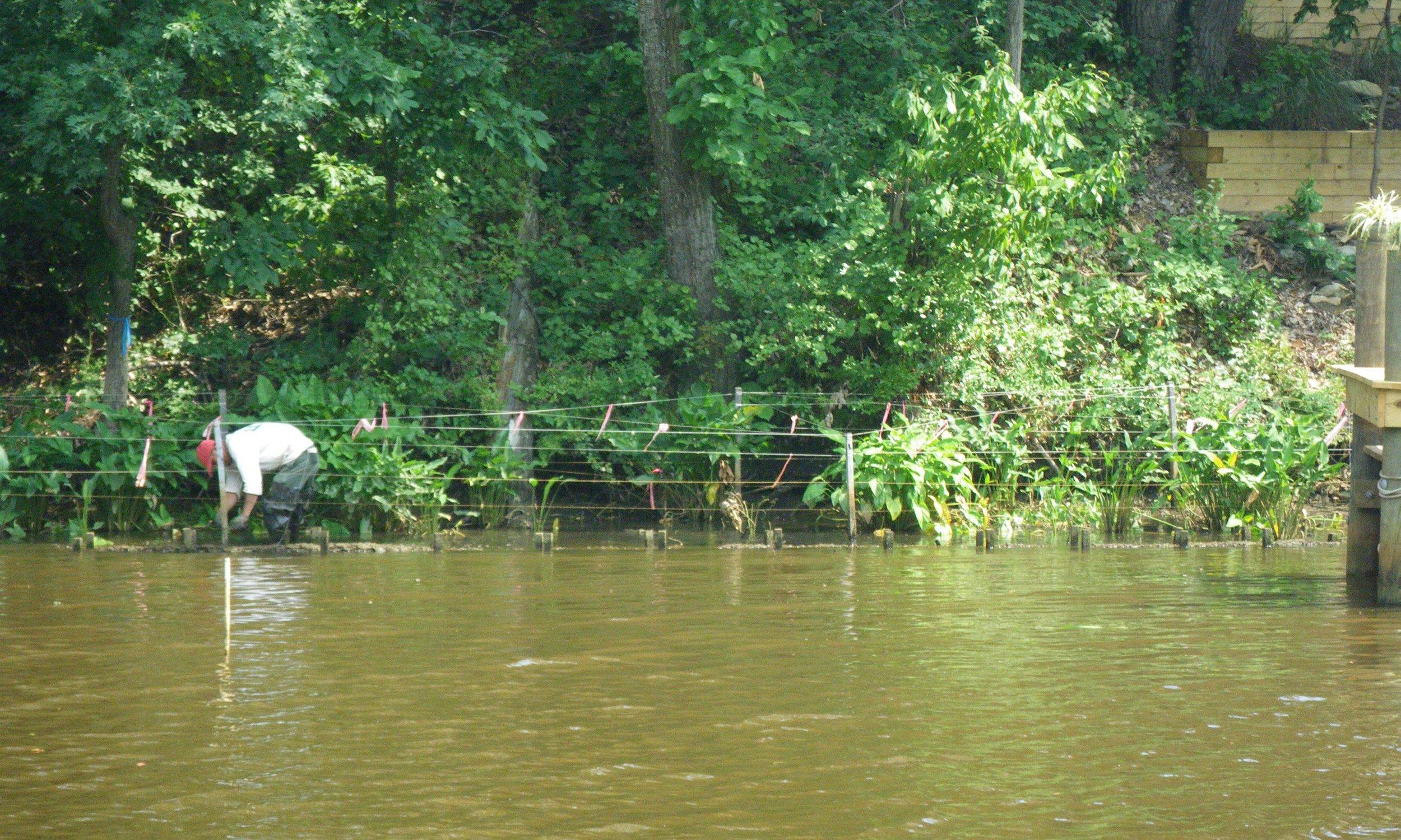 Mill Creek HW (3).jpg