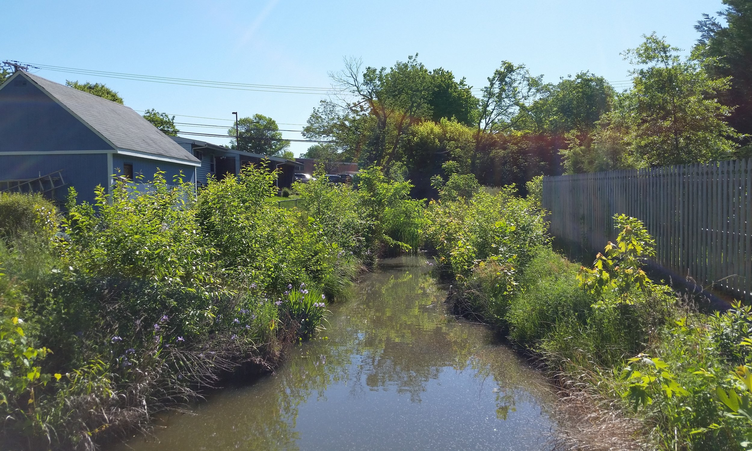 Haskell Drive Outfall Retrofit