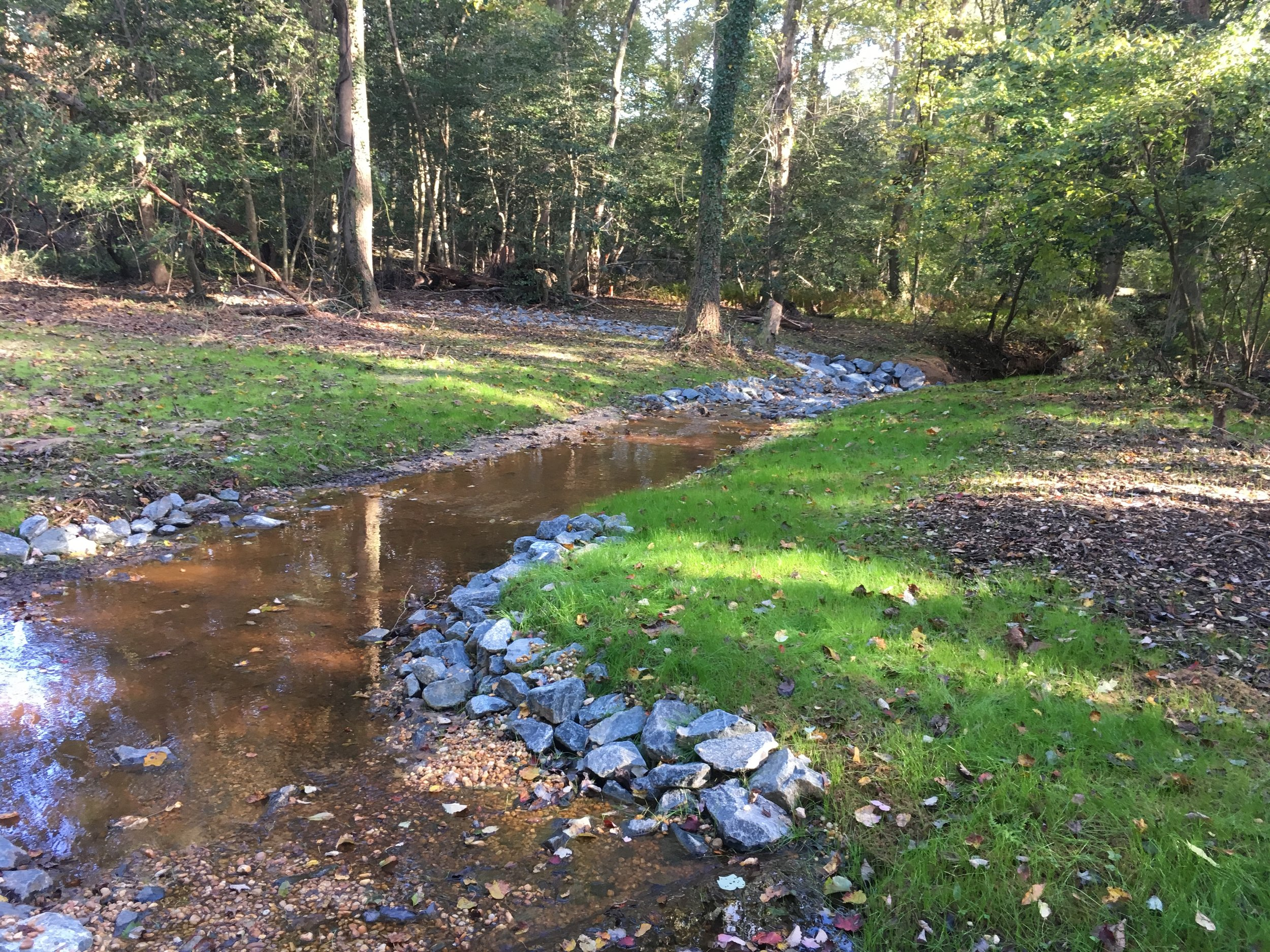 Cat Branch Expedited Stream Restoration & Sewer Line Protection
