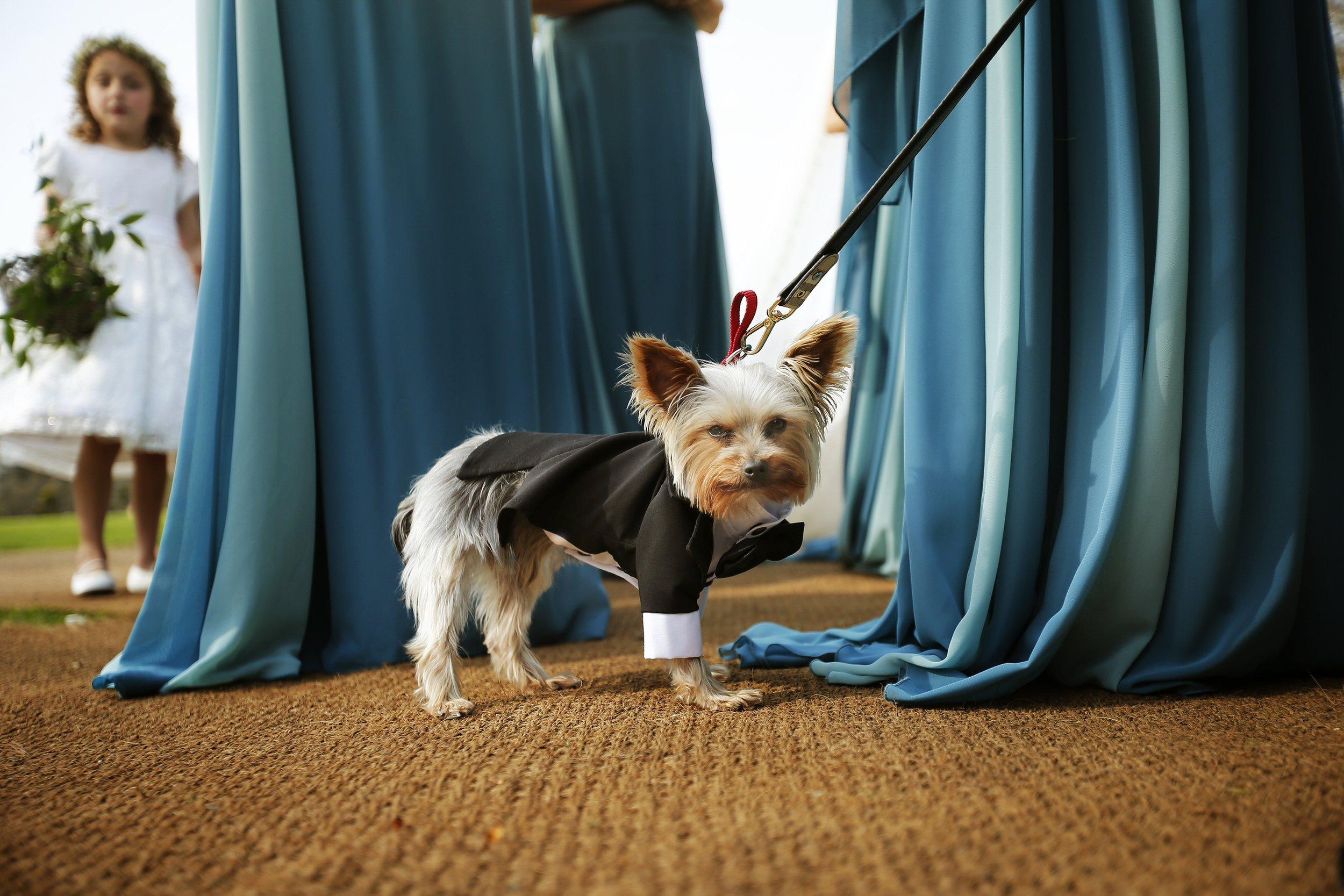 brettharkness-luxury-wedding-photographer-uk_0028.jpg