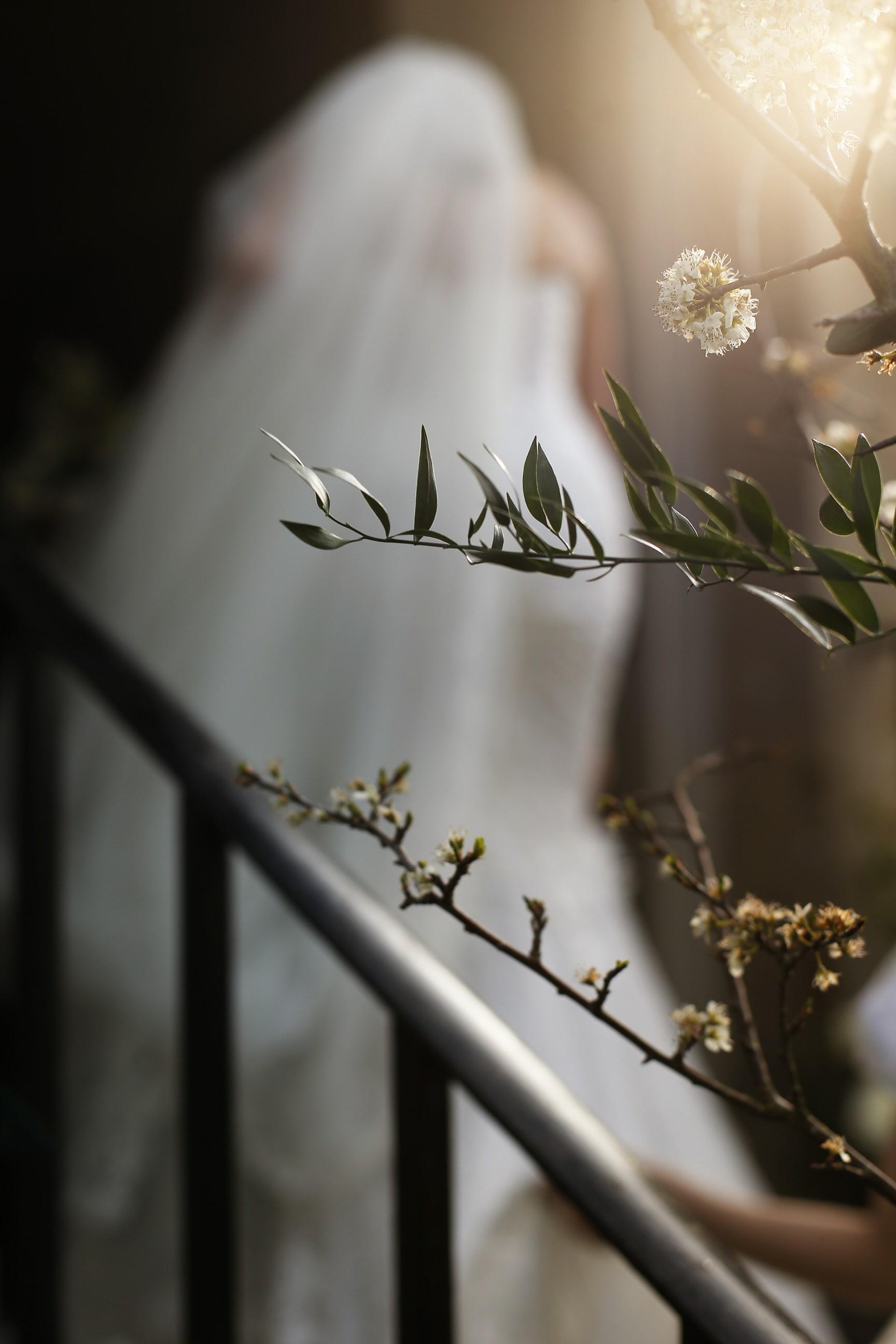 brettharkness-luxury-wedding-photographer-uk_0049.jpg