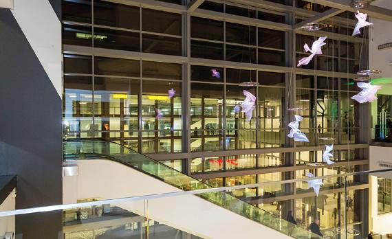 Reimagining Westchester retail -